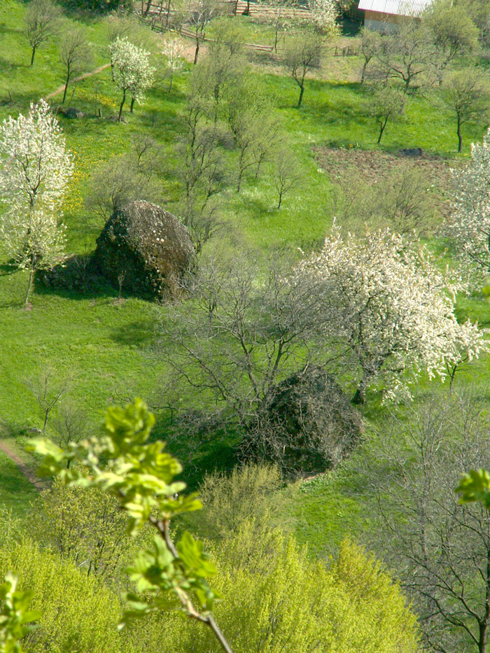 La poalele Pietrei Roșii se află un loc folosit în mod obișnuit pentru fân, unde apar, din pământ, două stânci de forma unor clăi de fân