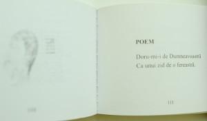Aschii de stele Nicolae Dabija recenzie Matricea Romaneasca (1)
