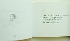 Aschii de stele Nicolae Dabija recenzie Matricea Romaneasca (14)