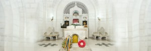 Ziua Eroilor Mausoleul de la Marasesti (9)