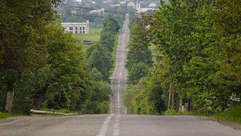 Bucovina: bastion de românism în faţa valurilor slave din istorie