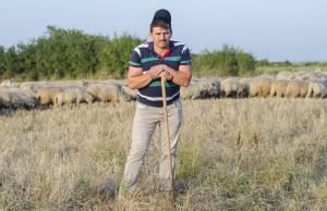 cioban Ionică Sterp Ianoşda România oile tradiţia Crişana foto interior