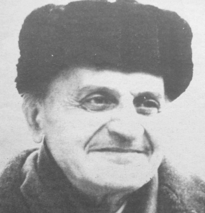Jurnal de idei, al lui Constantin Noica, o veritabilă carte reper pentru ceea ce înseamnă filosofie românească