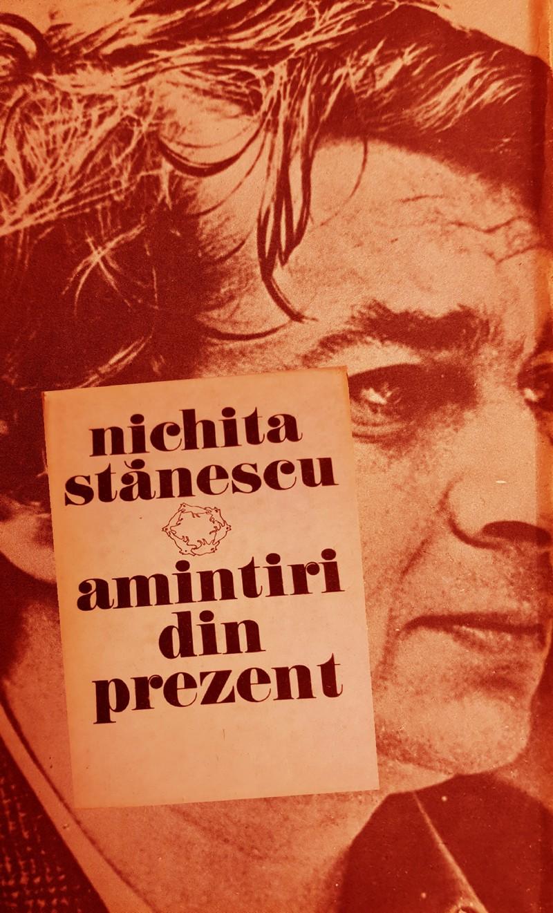 Nichita Stănescu amintiri din prezent poezie vorbe de duh interior