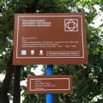 Colindările Matricei Drobeta-Turnu Severin ultimul loc din România în care se zâmbeşte Hala Radu Negru 2