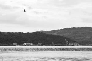 Colindarile Matricei Cazanele Dunarii iunie 2018 (4)