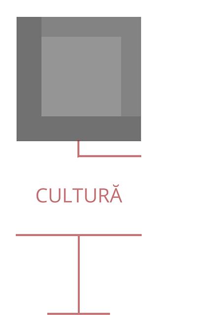 Despre-noi-Cultură