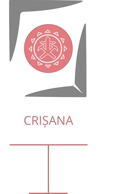 Galerie-Video_Crișana