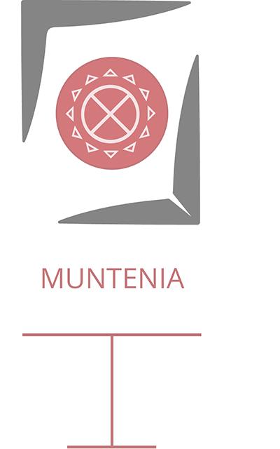 Galerie-Video_Muntenia