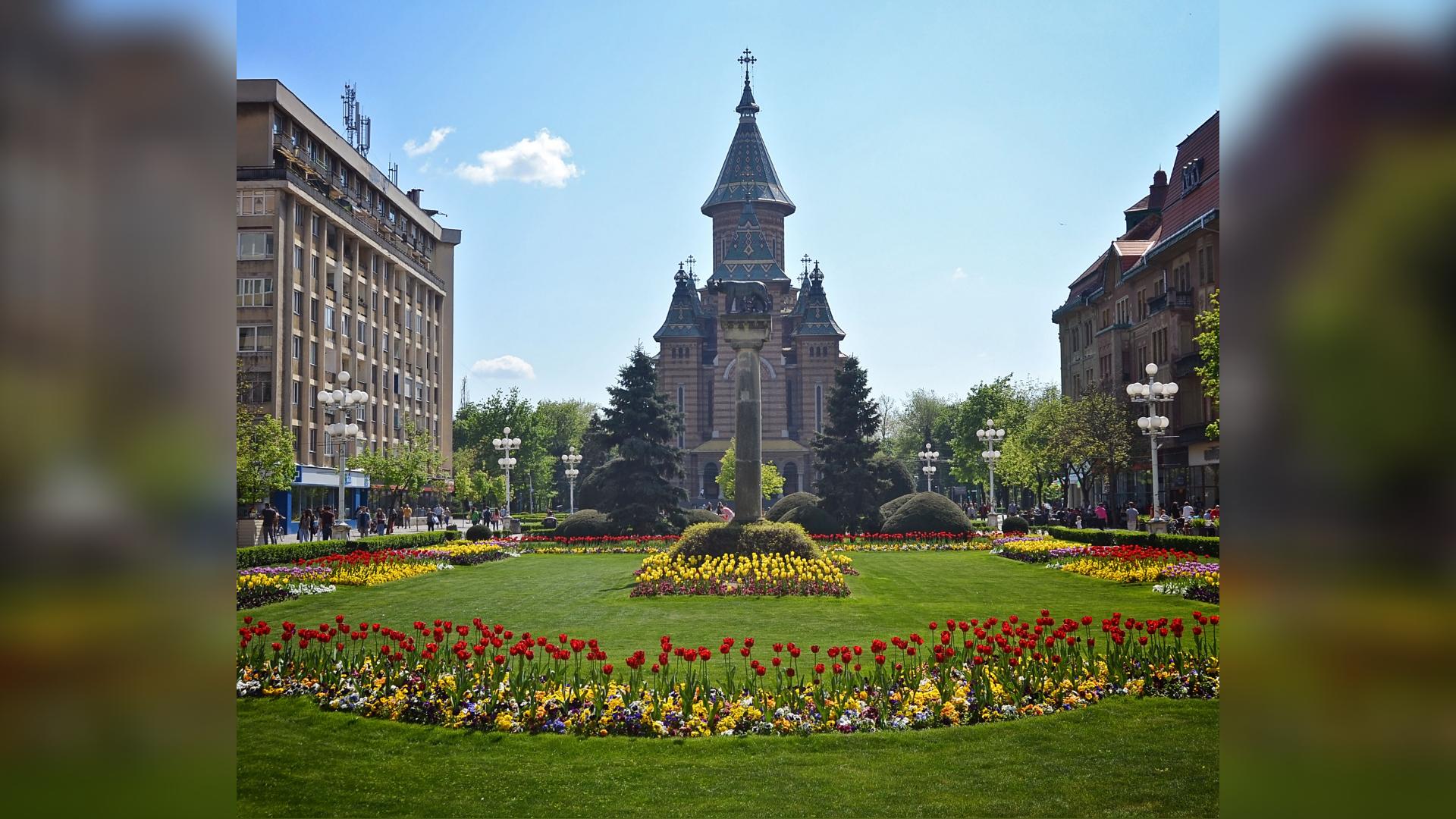 Catedrala M. Timisoara